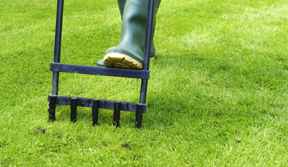 Tips on How to Take Care of Lawn During Drought Periods