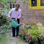 Easy Gardening Tips for Beautiful Carefree Landscapes