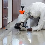 Why You Should Do Pest Control at Home?